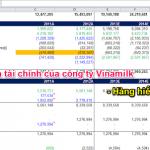 File mô hình hóa tài chính của công ty Vinamilk