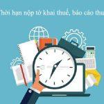 Thời hạn nộp tờ khai, nộp tiền thuế & cách tính tiền chậm nộp